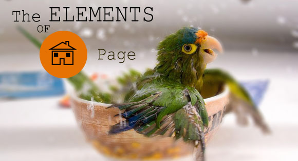 The Elements of a Home Page