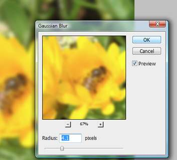 Blur Effects in Photoshop